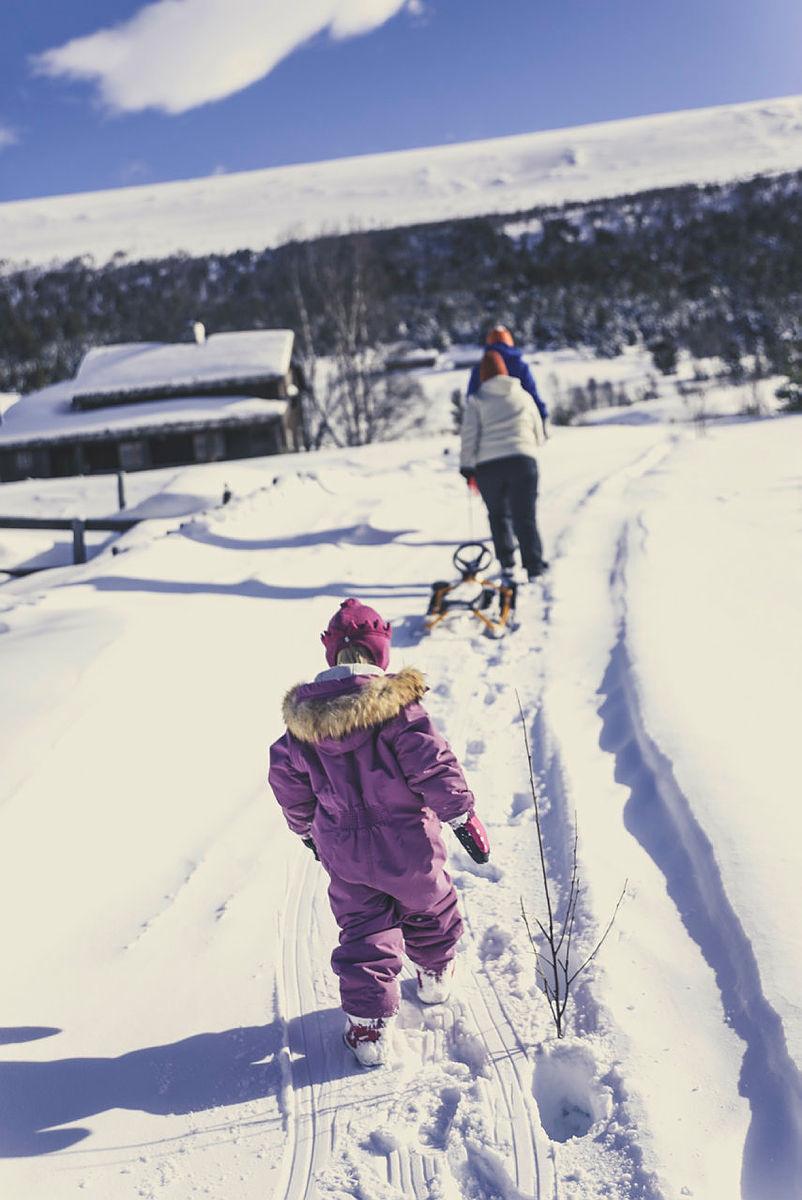 Vinter ved Sota Sæter.