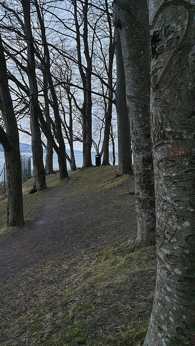 Ved å plassere noen objekter nært kamera og noen lengre bak oppnår man fin dybde. Her er det trærne som utnyttes til det formålet.