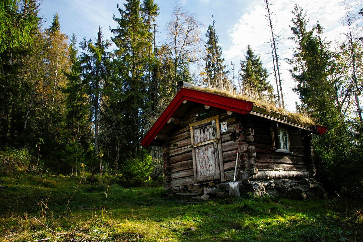 Drømmen på Krokskogen