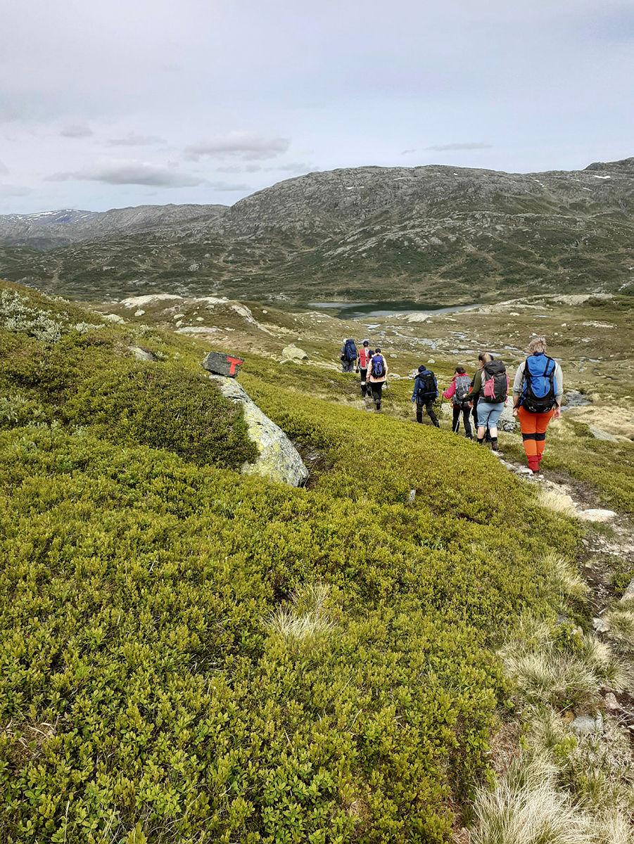 Fellestur til Taumevatn og Storevatn juni 2021