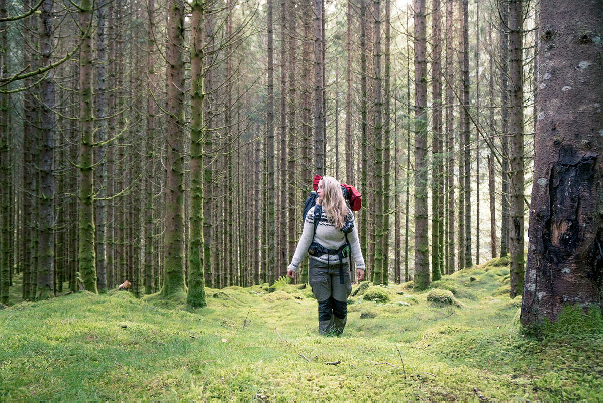Trolsk stemning i Stølsheimen. Stølsheimen er en av de ukjente turperlene som blir presentert i DNTs jubileumsbok Kunsten å vandre.