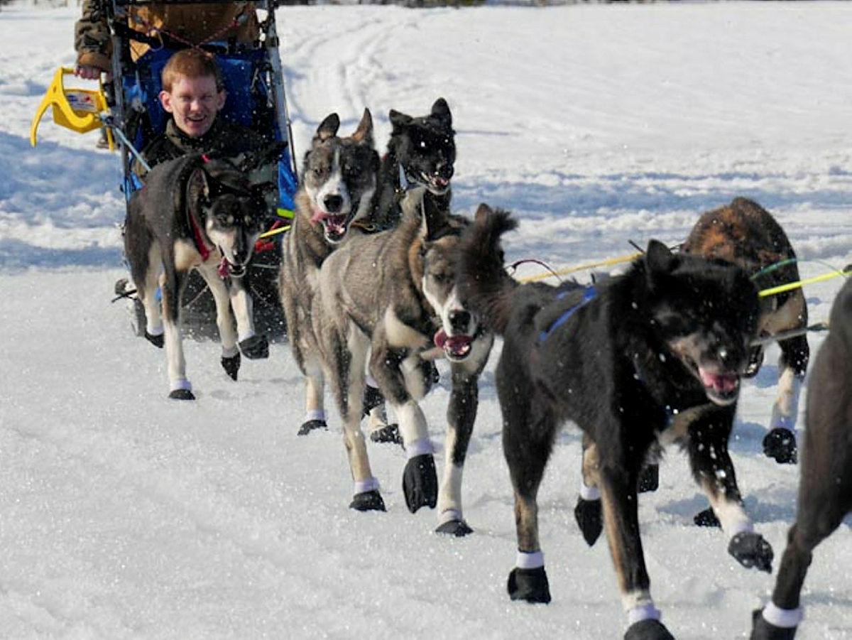 Klart Det Går: Starter året med hundekjøring