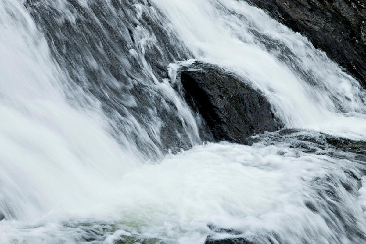 Funn av harepest i Sør-Norge