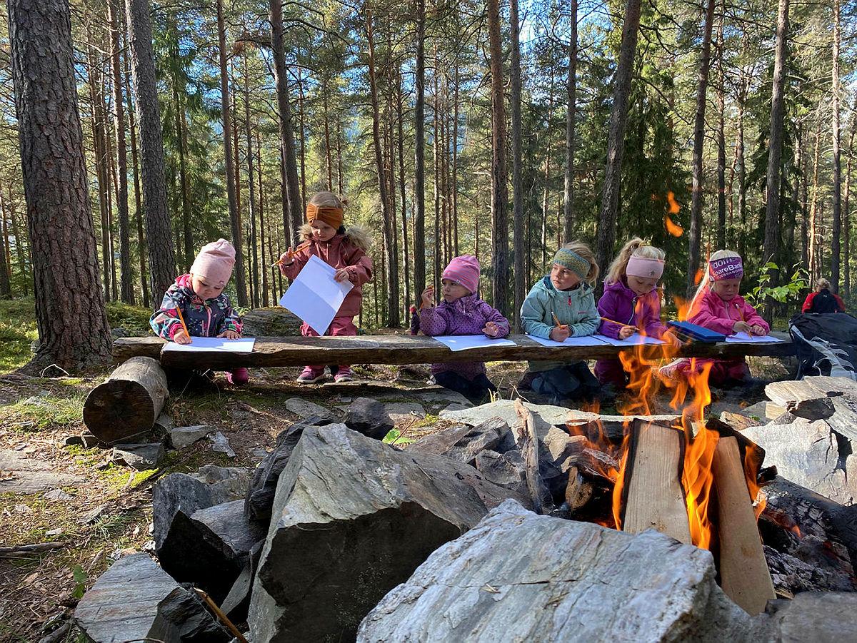 Kom deg ut-dagen: Ulbergskogen i Ringebu