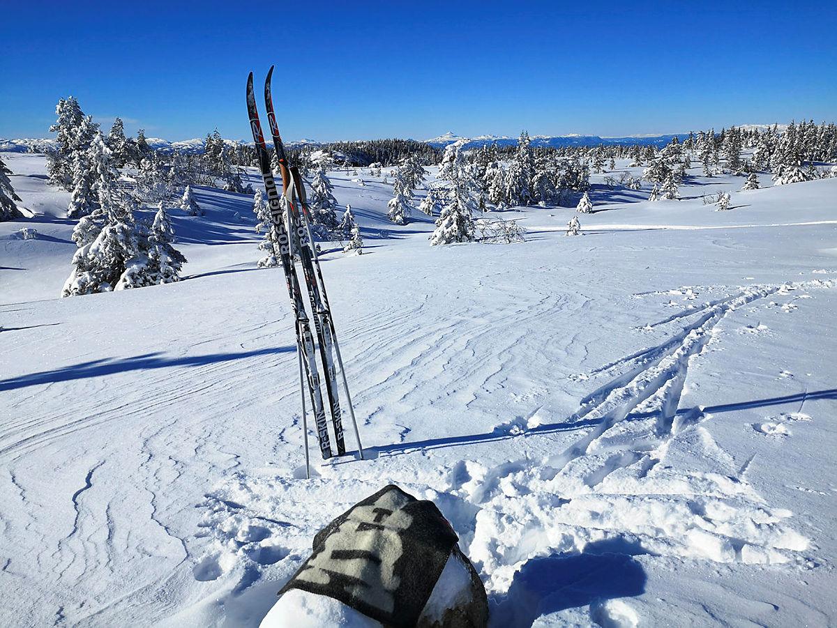 Svanstul skiløyper