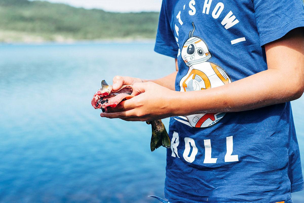 Sløying av fisk