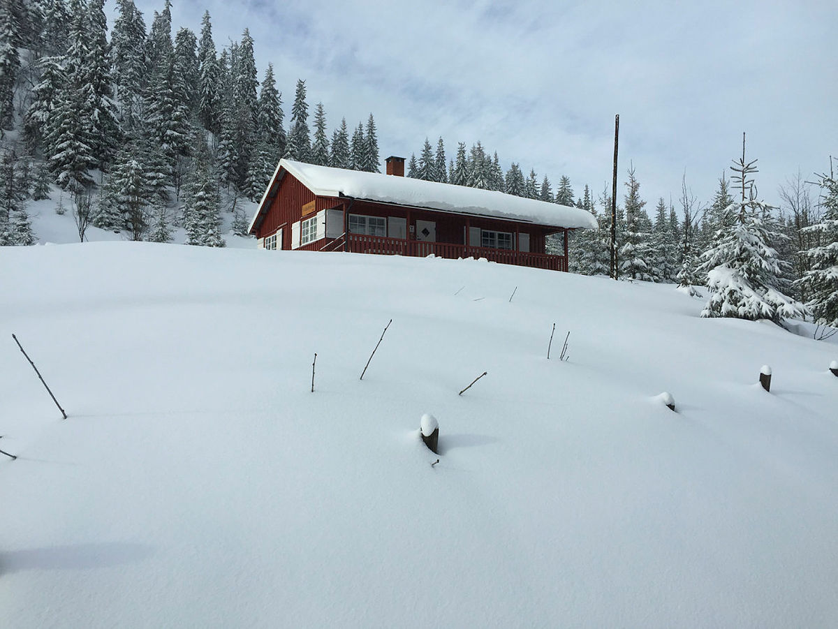 Den ubetjente DNT-hytta Vikkelihytta ligger vakkert til i et snøsikkert område på Nordåsen i Nannestad.