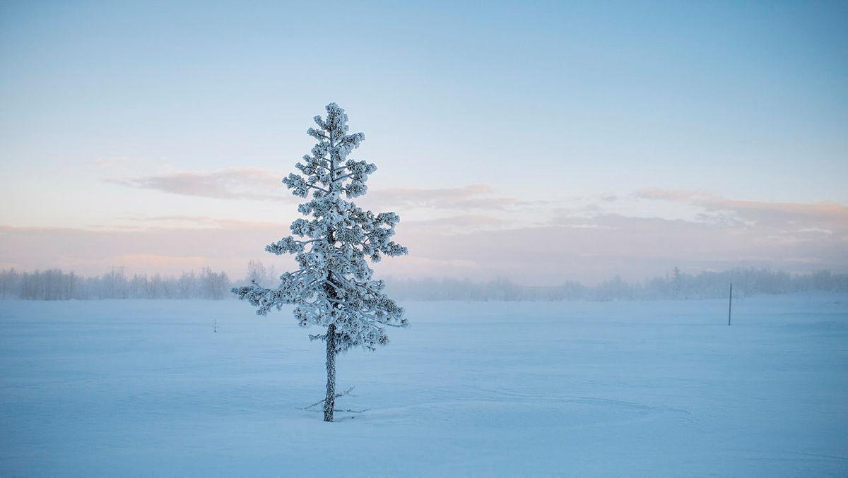 Magiske snøforhold i Langsua