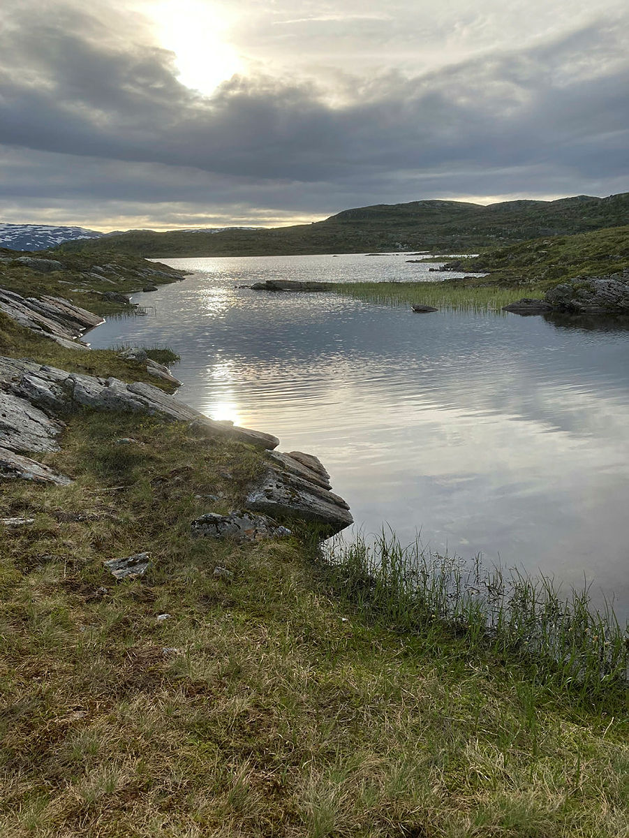 Onsdagstur til Krokasetvatnet, 23. juni 2021.